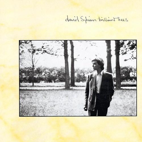 David_Sylvian-Brilliant_Trees_(album_cover)